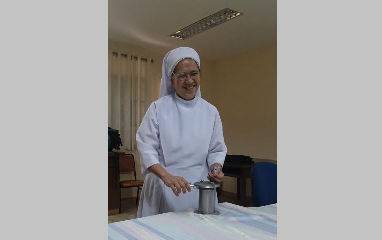 GGHH Member Sisters of St. Paul de Chartres: Stewards of Health and the Environment